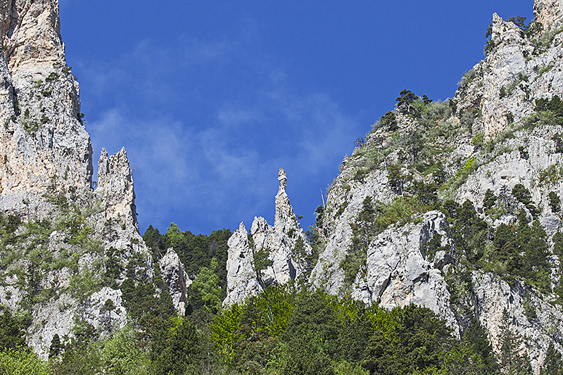 Limestone ridge Valley de Combeau Vercors Regional Natural Park Vercors France June 2016
