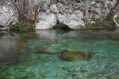 Restonica river Parc Naturel Regional de Corse Corsica France