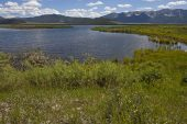 Wigeon Pond Red Rock Lakes National Wildlife Refuge Centennial Valley Idaho USA June 2015