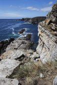 Coastal cliffs Cape Tamar Pebble Island Falkland Islands British Overseas Territory December 2016