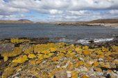 Bernsten Bay and Green Rincon headland Pebble Island Falkland Islands British Overseas Territory December 2016