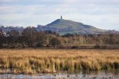 Glastonbury Tor with Catcott Lows Somerset Wildlife Trust Reserve in the foreground Somerset