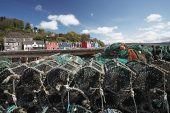 Lobster pots on the harbour side with the town of Tobermory beyond Isle of Mull Scotland UK May 2012