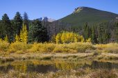 Lily lake with woodland and Long's Peak beyond Rocky Mountain National Park Colorado USA
