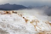 Terrace Spring Mammoth Hot Springs Mammoth Yellowstone National Park Wyoming USA June 2015