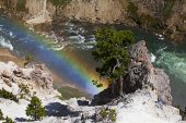Rainbow in the Grand Canyon of the Yellowstone River Yellowstone National Park Wyoming USA June 2015