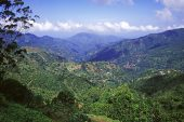Hardwar Gap in the Blue and John Crow Mountains St Andrew Parish Jamaica