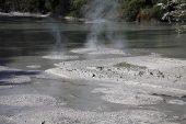 Waiotapu mud pool North Island New Zealand