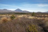 Ngaruhoe mountain model for Mount Doom in Lord of the Rings Tongariro National Park North Island New Zealand