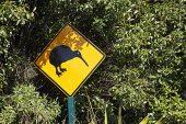 Kiwi sign near Whakapapanui stream Tongariro National Park North Island New Zealand