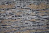 Layers in sedimentary rock Munro Beach South Island New Zealand