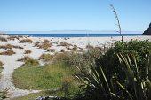 Beach at Ship Creek Nature Trail New Zealand