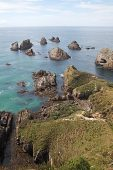 Small rocky islands off Nugget Point South Island New Zealand